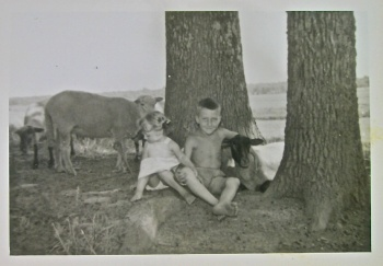 Back when sheep were fun. Anna and brother, John David Hardy amongst the flock.