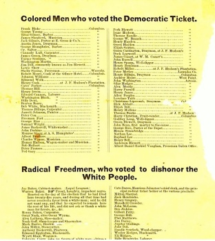 Voting report 1868, Radical Freemen